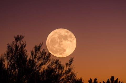 Luna llena del ciervo: El plenilunio más hermoso este 23 de julio