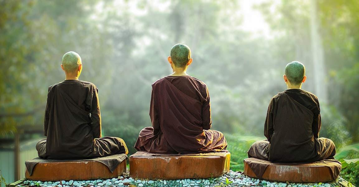 La alquimia de la compasión: así es como ser compasivo transforma la mente  y la vida