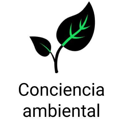 Materias que deberían enseñar en la escuela: conciencia ambiental